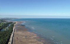 海沙覆蓋調查作業空拍影像相簿