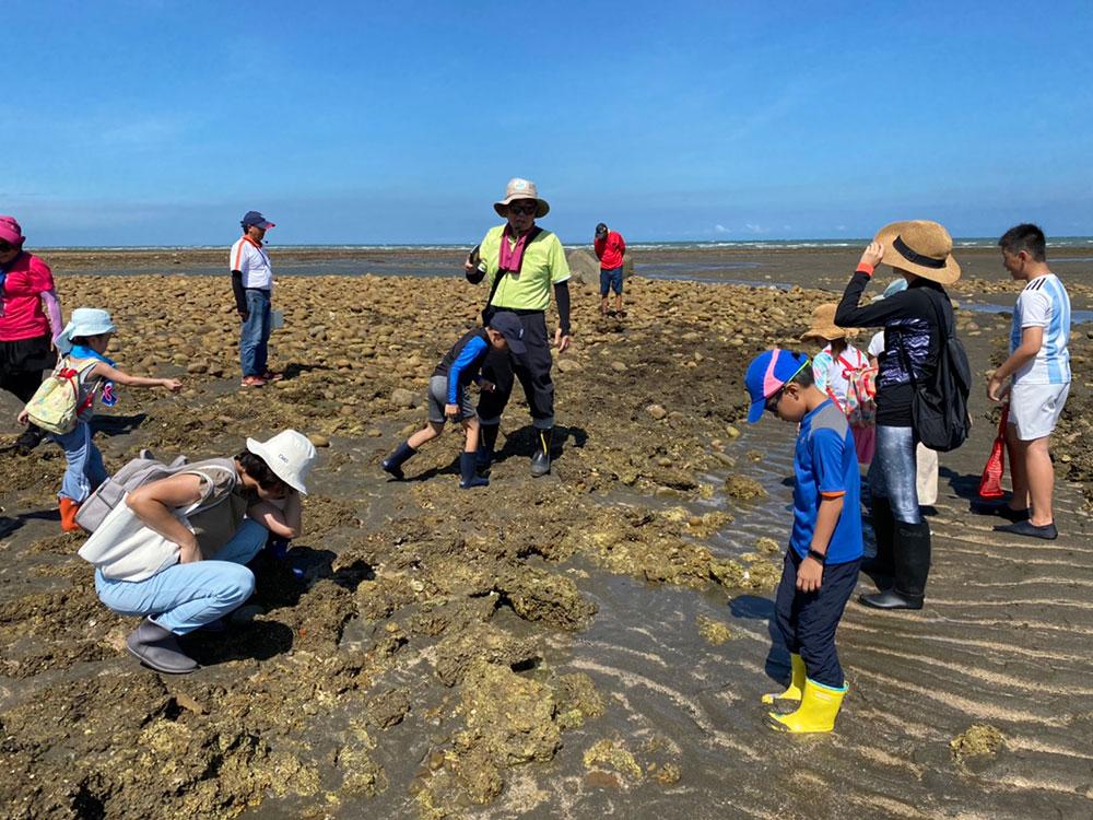 配合潮汐時間至潮間帶藻礁區進行實地觀察