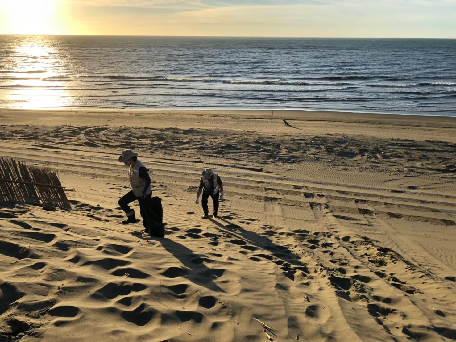 夕陽下清理草漯沙丘上垃圾的身影