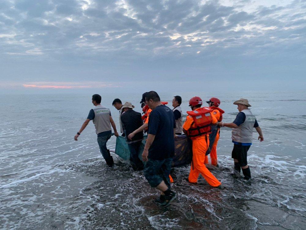 協助海洋保育類野生動物活體搬運及後送